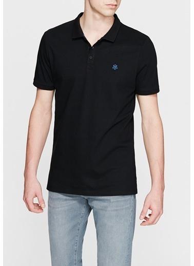 Mavi Polo Yaka Tişört Siyah